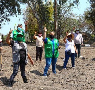 women farmers in field waving